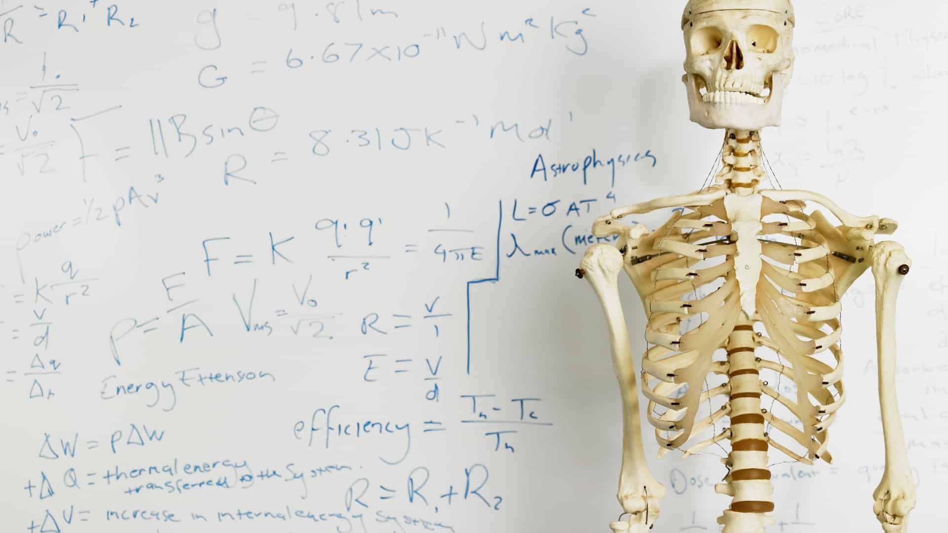 Take a Free HESI A2 Anatomy and Physiology Practice Test